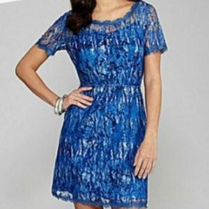 Blue Lace Dress from Gianni Bini